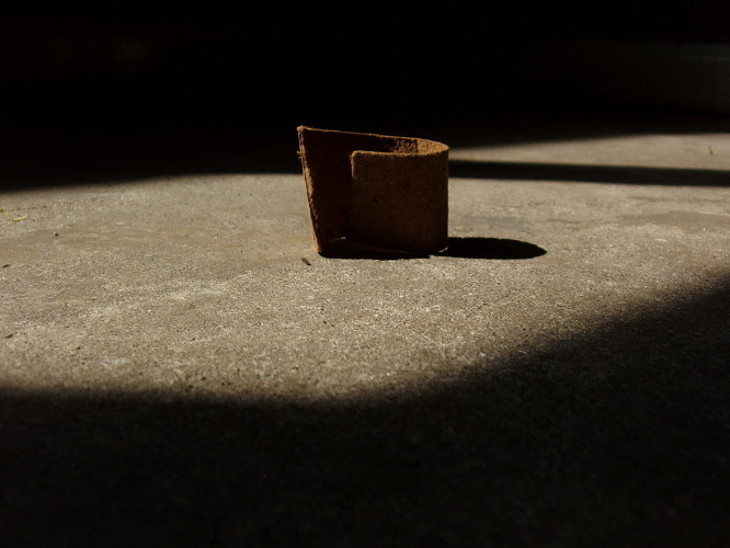 Curve, 2014. Cardboard, dimensions variable